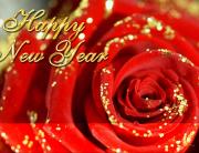 happy_new_year_maf04_resized