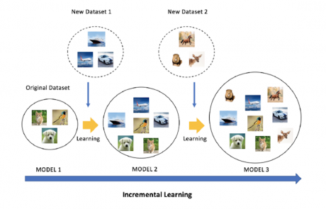 MCL Research on CNN Incremental Learning