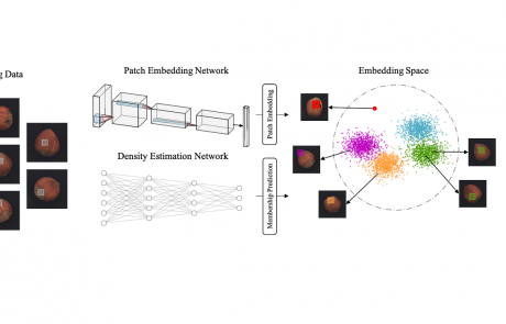 MCL Research on Image Artifact Detection and Localization