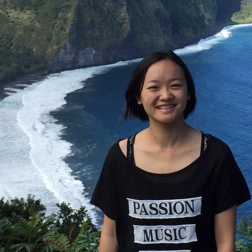 <a href='http://mcl.usc.edu/people/graduate-students/#Yueru_Chen'>Yueru Chen</a>
